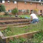 S-building-garden
